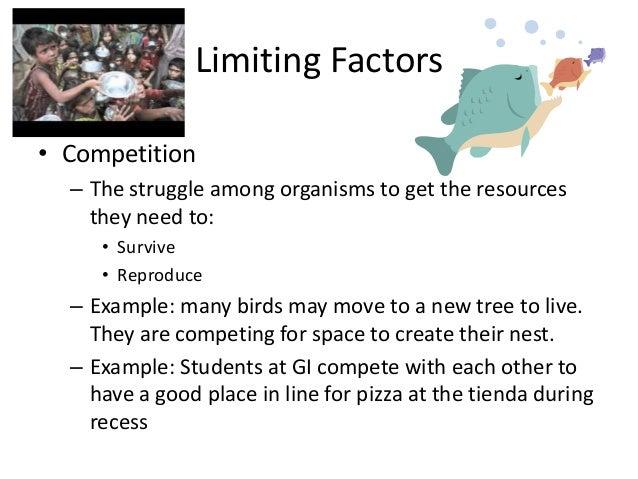 Limiting factors – Limiting Factors Worksheet