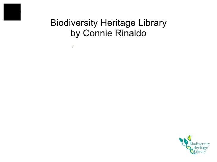 Biodiversity Heritage Library by Connie Rinaldo
