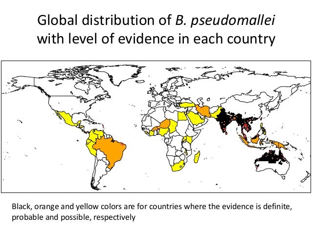 The Global Distribution And Burden Of Melioidosis, An