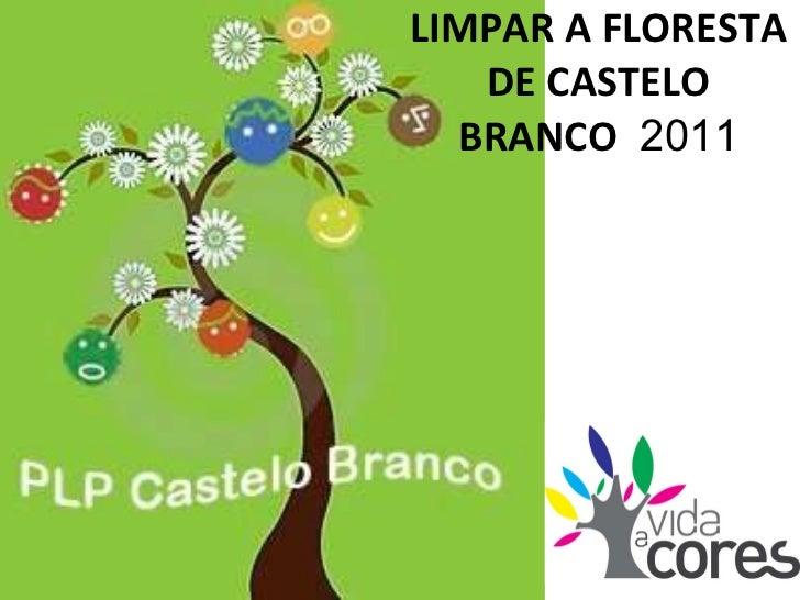 LIMPAR A FLORESTA DE CASTELO BRANCO  2011