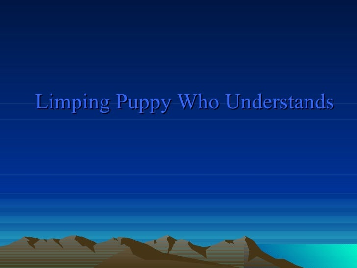 Limping Puppy Who Understands