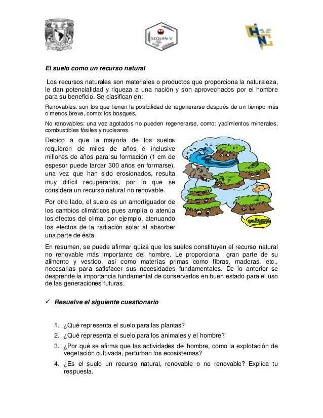Lectura importancia del suelo for Importancia de los suelos