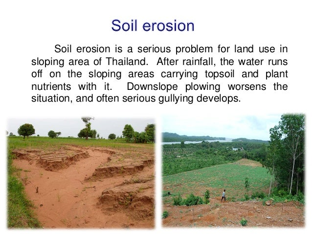 Status and priorities of soil management in thailand for Soil management