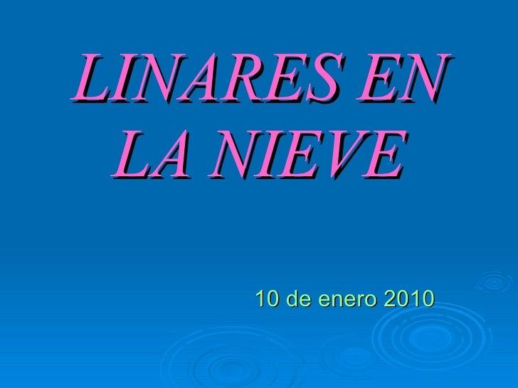 LINARES EN LA NIEVE 10 de enero 2010