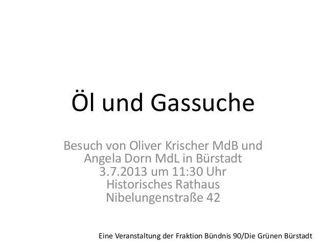 Öl und Gassuche Besuch von Oliver Krischer MdB und Angela Dorn MdL in Bürstadt 3.7.2013 um 11:30 Uhr Historisches Rathaus ...