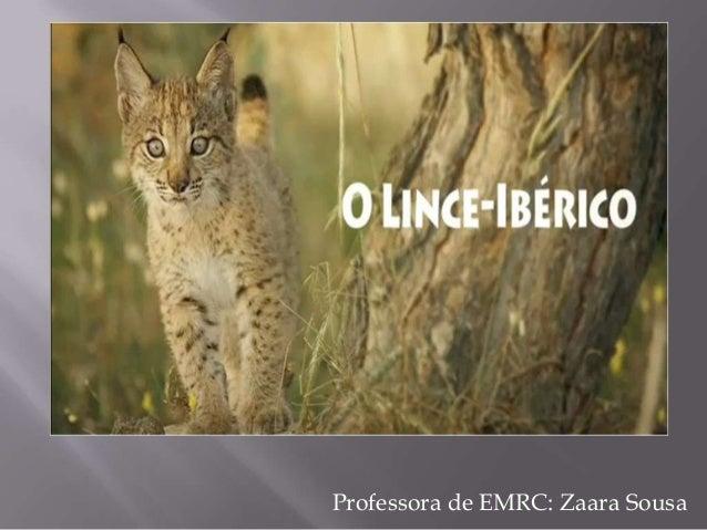 Professora de EMRC: Zaara Sousa
