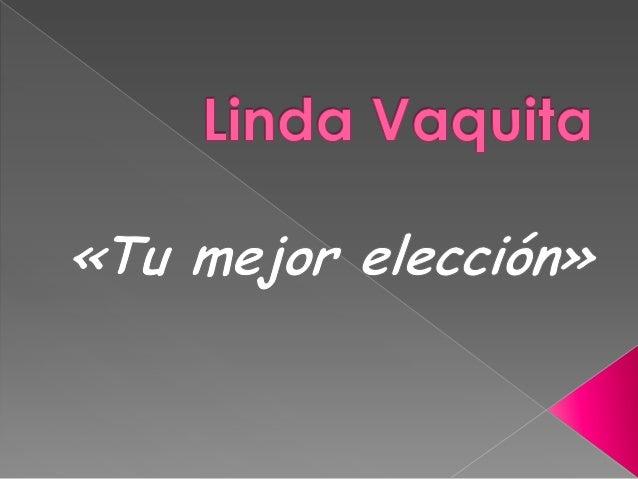 Linda vaquita