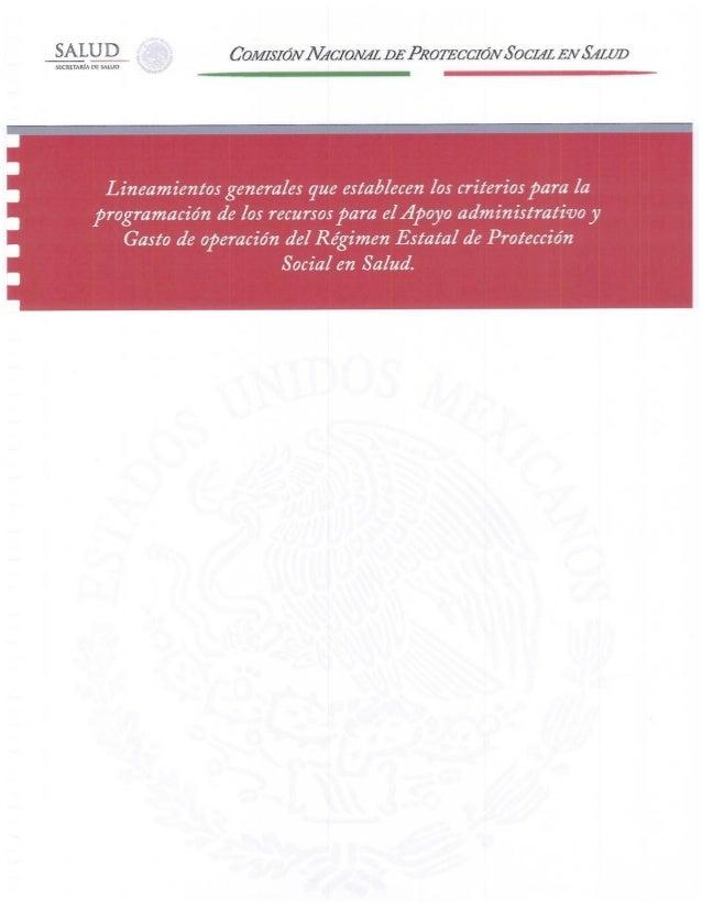 Lineamientos 2013 REPSS CNPSS
