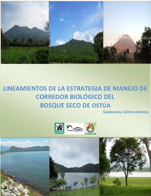 LINEAMIENTOS DE LA ESTRATEGIA DE MANEJO DE CORREDOR BIOLÓGICO DEL BOSQUE SECO DE OSTÚA Guatemala, Centro América