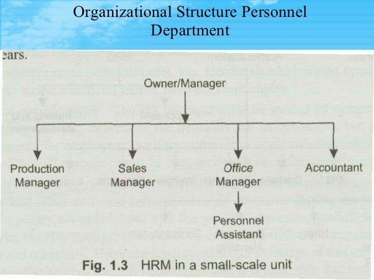 organisation structure and hrm ppt