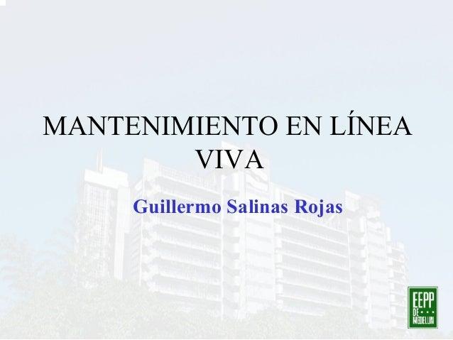 MANTENIMIENTO EN LÍNEA VIVA Guillermo Salinas Rojas