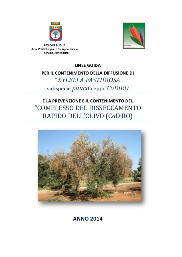 Mappa Xylella Puglia.Codiro Xylella Fastidiosa