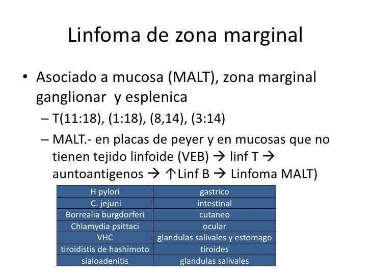 Linfoma de zona marginal• Extragastricos (intestino , colon  , pulmon,glandulas salivales)• Tratamiento  – Antibiotco  – C...