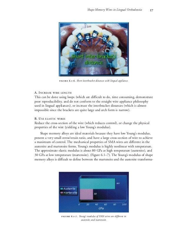 Lingual (2)