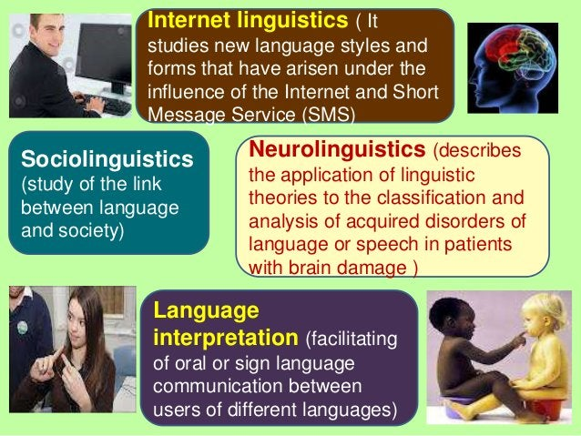Internet linguistics ( It              studies new language styles and              forms that have arisen under the      ...