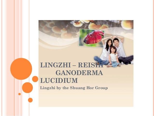 LINGZHI – REISHI GANODERMA LUCIDIUM Lingzhi by the Shuang Hor Group