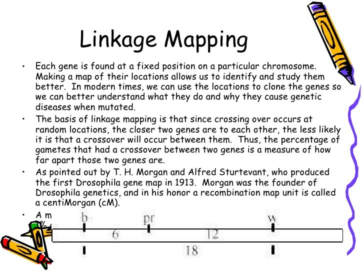 Linkage and crossing over on
