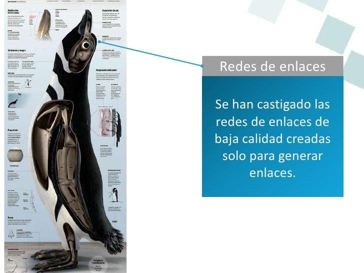 Calidad de enlace  El pingüino quiere        calidad.Es capaz de identificarlas granjas de enlaces. Salientes/contenido
