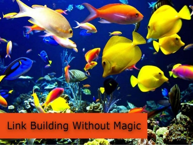 Read more www.SeoCustomer.comYou can also call this link building theaquarium way• The search engines don't like the linkb...