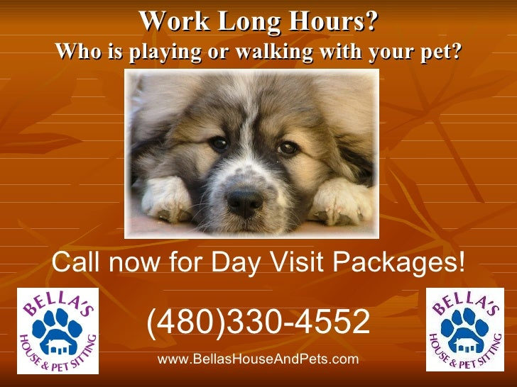 Work Long Hours? Who is playing or walking with your pet? Call now for Day Visit Packages! (480)330-4552 www.BellasHouseAn...