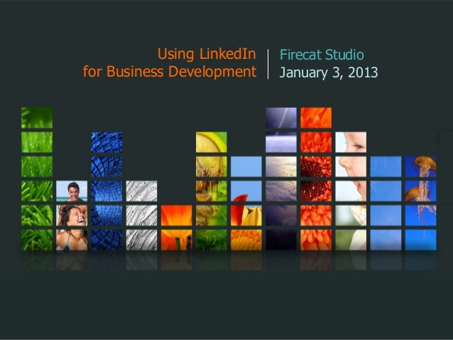 Using LinkedIn   Firecat Studiofor Business Development    January 3, 2013