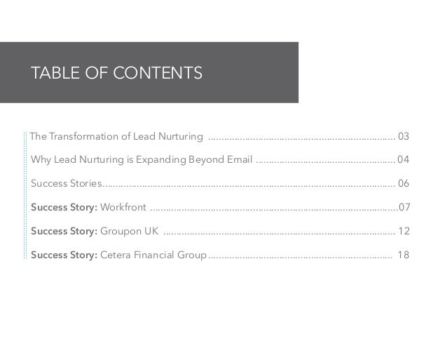 The Sophisticated Marketer's Crash Course In Lead Nurturing: Success Stories Slide 2