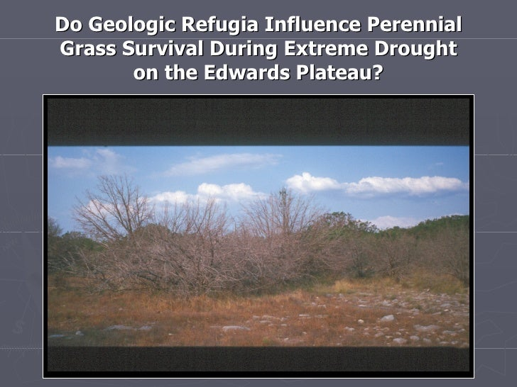 Do Geologic Refugia Influence Perennial Grass Survival During Extreme Drought        on the Edwards Plateau?  Perennial Gr...