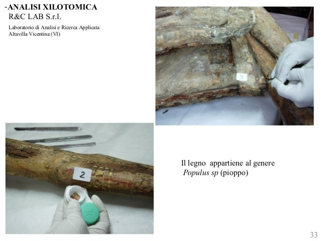 -ANALISI XILOTOMICA  R&C LAB S.r.l.  Laboratorio di Analisi e Ricerca Applicata  Altavilla Vicentina (VI)  Il legno appart...
