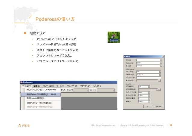 URL : http://www.asial.co.jp/ │ Copyright © Asial Corporation. All Rights Reserved. │ 10 Poderosaの使い方 起動の流れ • Poderosaのアイコ...