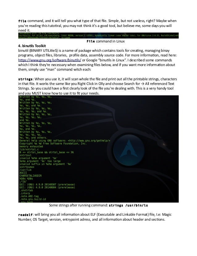 Reverse Engineering in Linux - The tools showcase