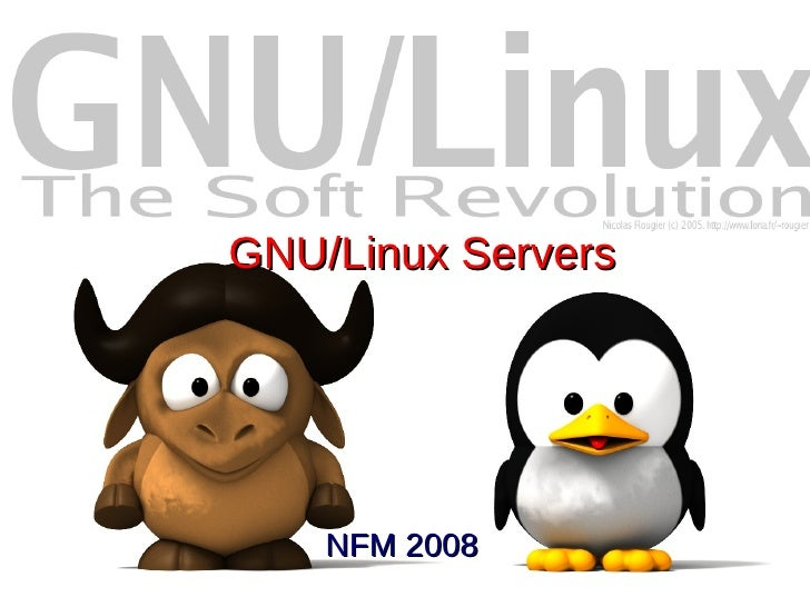 GNU/Linux Servers         NFM 2008
