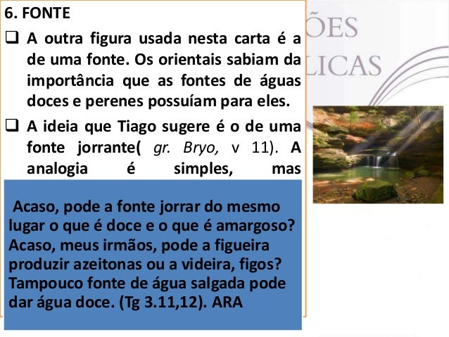 7. ÁRVORE  Tiago apela para a peculiaridade de Acaso, meus irmãos, pode a figueira cada azeitonas ou a videira, figos? pr...