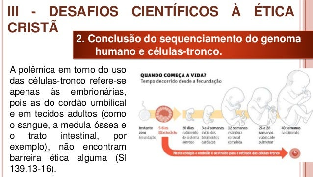 32 2. Conclusão do sequenciamento do genoma humano e células-tronco. A polêmica em torno do uso das células-tronco refere-...