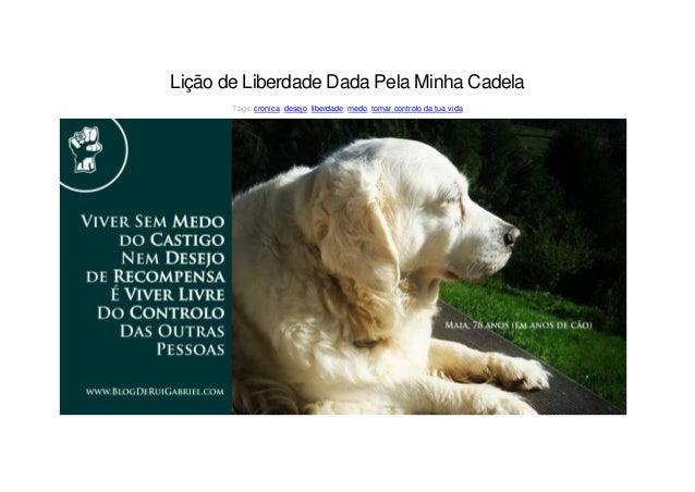 Lição de Liberdade Dada Pela Minha Cadela Tags: cronica, desejo, liberdade, medo, tomar controlo da tua vida