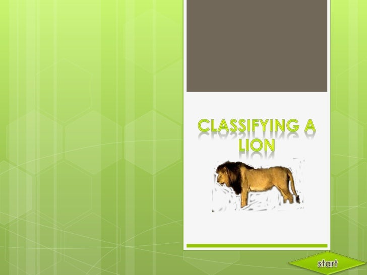Hello I'm a lion! I'llshow you aroundand teach youabout Taxonomy.                          Let's                         c...