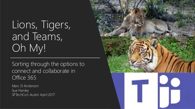 Lions, Tigers, and Teams, Oh My! Sorting through the options to connect and collaborate in Office 365 Marc D Anderson Sue ...