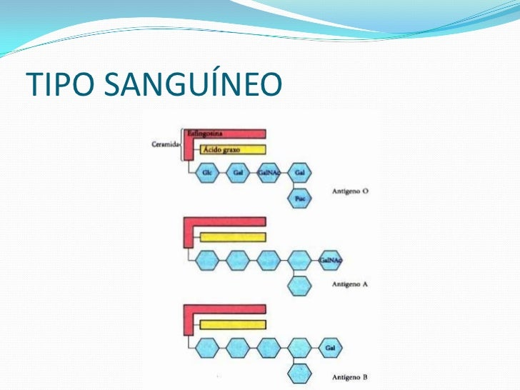 COLESTEROLO colesterol pode ser transportado no sanguehumano associado a lipoproteínas:- LDL (Low Density Lipoprotein)    ...