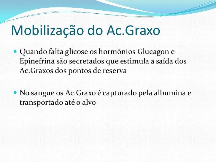 Degradação de Ácidos Graxos                                Triacilglicerol                  Lipases                       ...