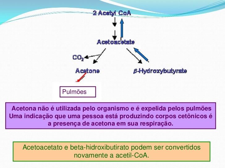Lipídios - Geral