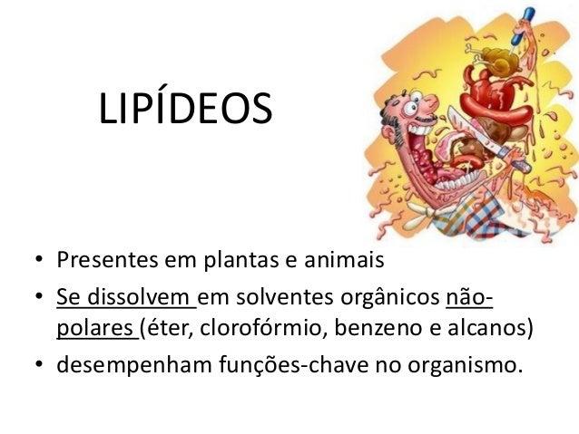 LIPÍDEOS  •Presentes em plantas e animais  •Se dissolvem em solventes orgânicos não- polares (éter, clorofórmio, benzeno e...