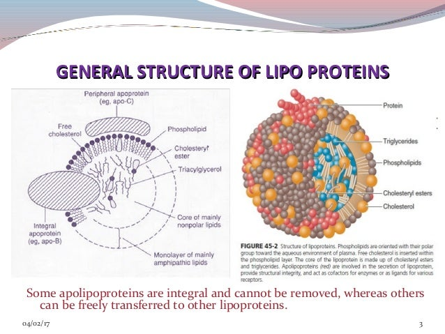 Lipoprotein disorders Slide 3