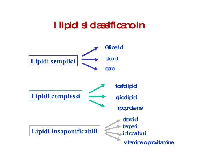 steroidi struttura