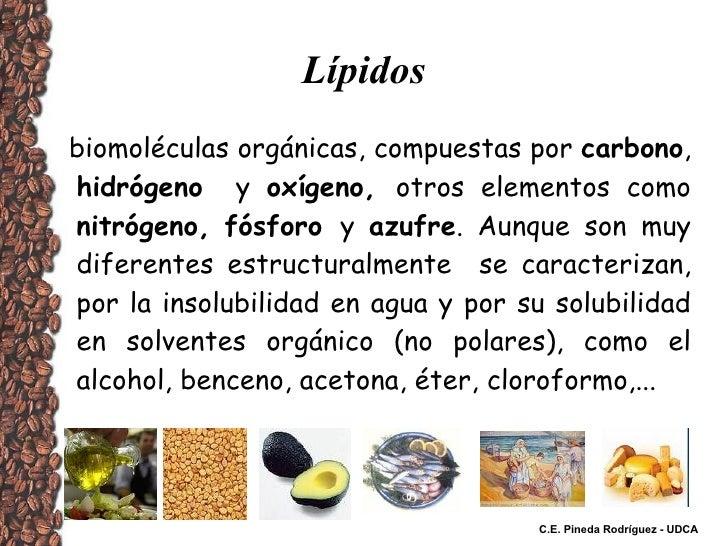 Lípidos biomoléculas orgánicas, compuestas por  carbono ,  hidrógeno   y  oxígeno,  otros elementos como  nitrógeno,   fós...