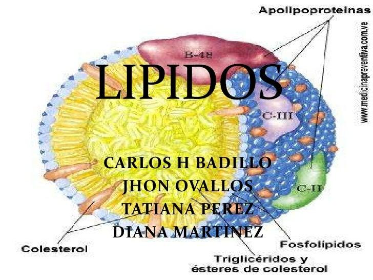 LIPIDOS<br />CARLOS H BADILLO<br />JHON OVALLOS<br />TATIANA PEREZ<br />DIANA MARTINEZ<br />