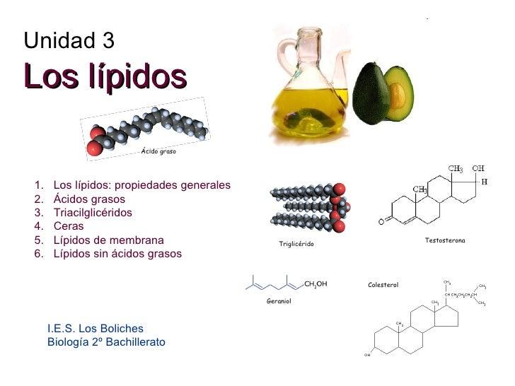 los esteroides no son malos