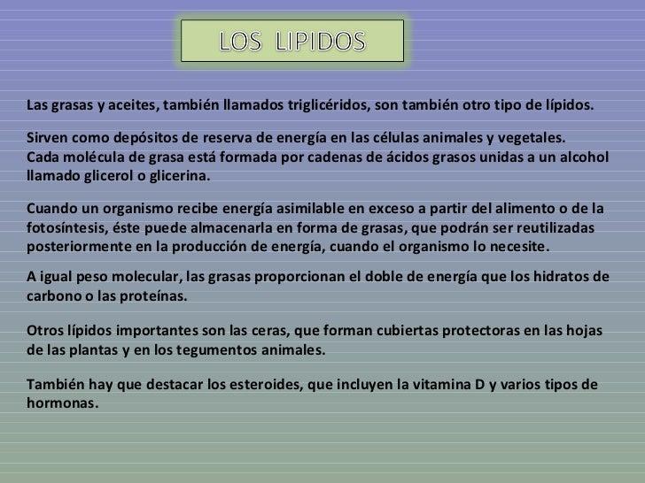 Lipidos Slide 3