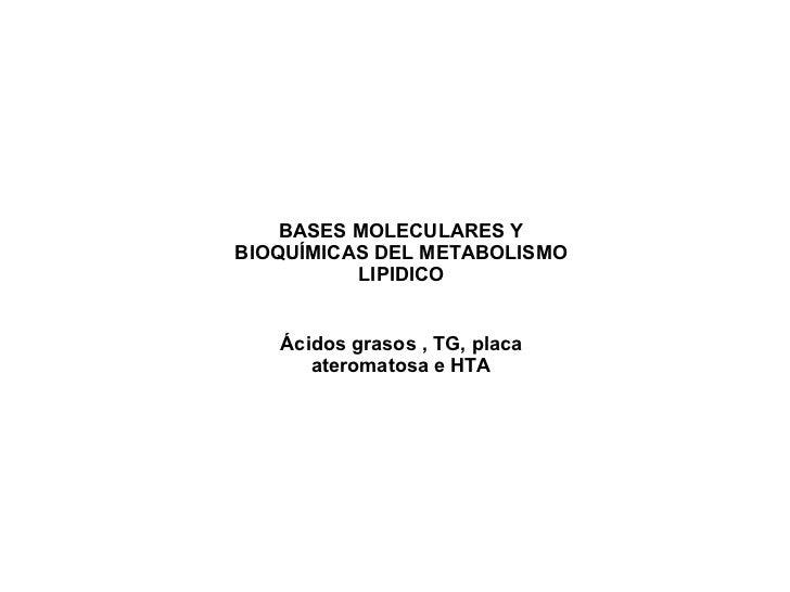 BASES MOLECULARES Y BIOQUÍMICAS DEL METABOLISMO LIPIDICO Ácidos grasos , TG, placa ateromatosa e HTA