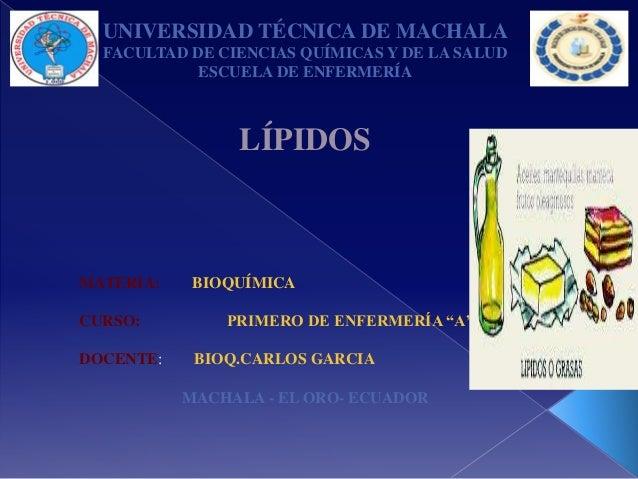 UNIVERSIDAD TÉCNICA DE MACHALA FACULTAD DE CIENCIAS QUÍMICAS Y DE LA SALUD ESCUELA DE ENFERMERÍA  LÍPIDOS  MATERIA: CURSO:...