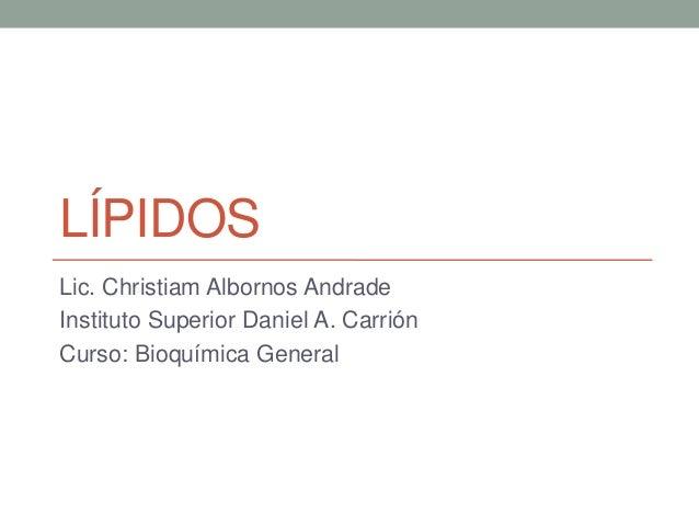 LÍPIDOS Lic. Christiam Albornos Andrade Instituto Superior Daniel A. Carrión Curso: Bioquímica General