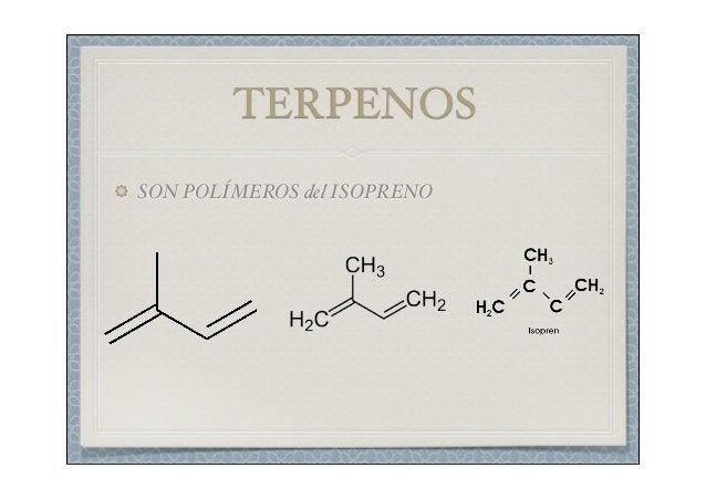 esteroides o lipidos derivados